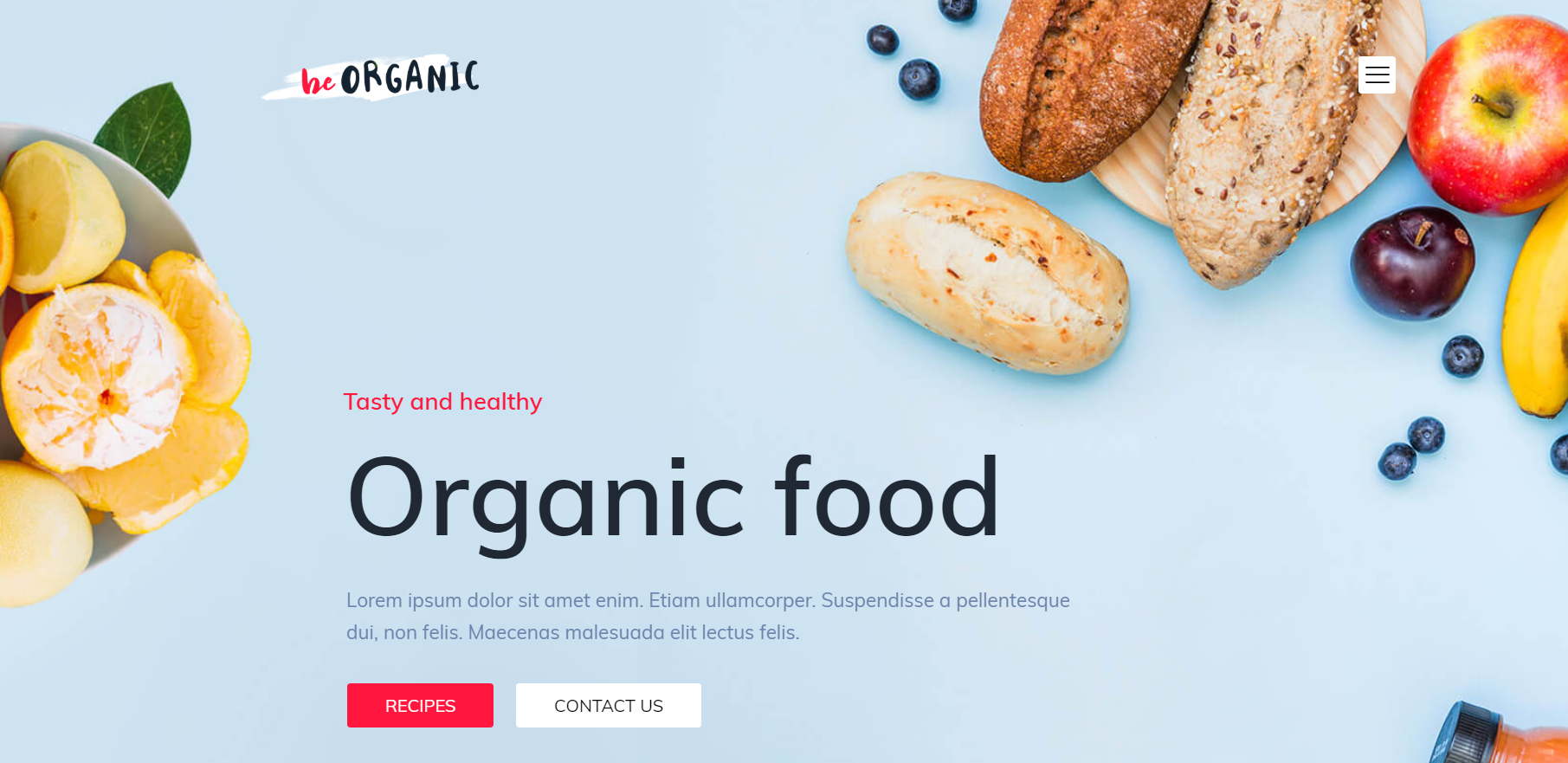 Organic Food   13 Best WordPress Themes For All Types Of Blogs & Websites